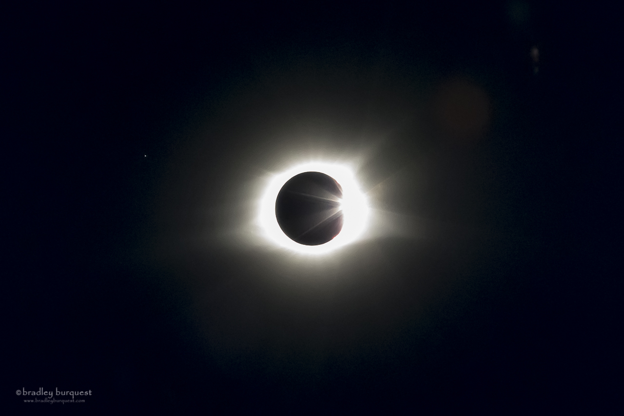 Total Eclipse and Regulus