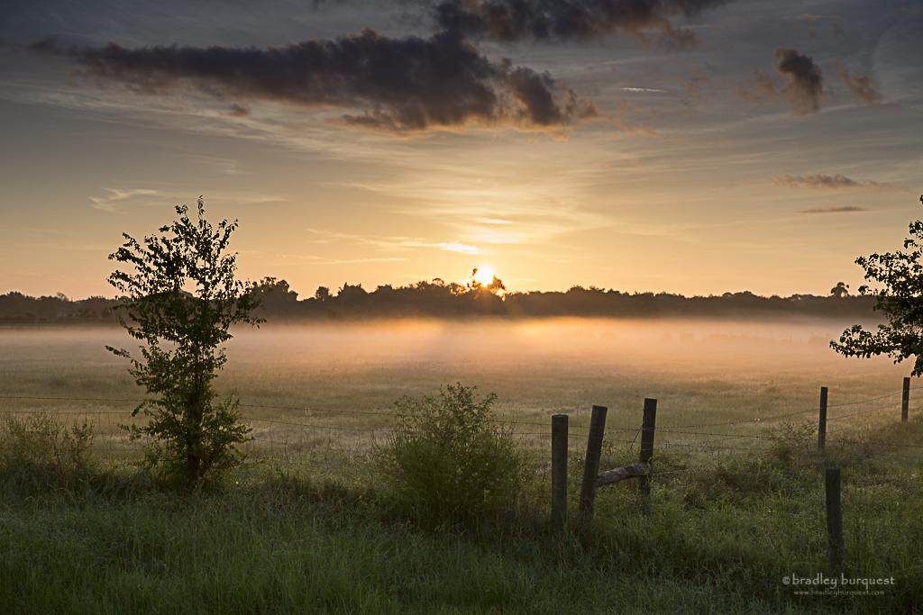Sun thru the Mist